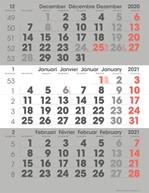 3-maandkalender 2021 Manager Compact