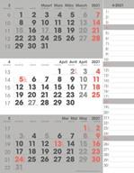 3-maandkalender 2021 Manager Compact Notes