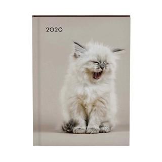 Agenda 2020 Lannoo My favourite friends cat roze