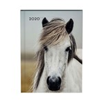Agenda 2020 Lannoo My favourite friends horse blauw