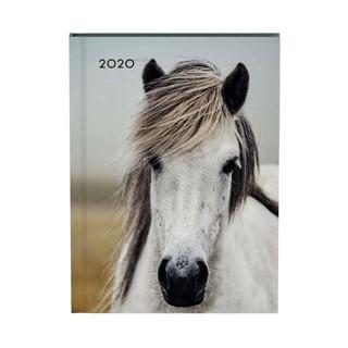 Agenda 2020 Lannoo My favourite friends horse blauw