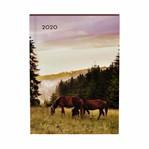 Agenda 2020 Lannoo My favourite friends horse paars