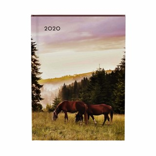 Agenda 2020 Lannoo My favourite friends horse paars