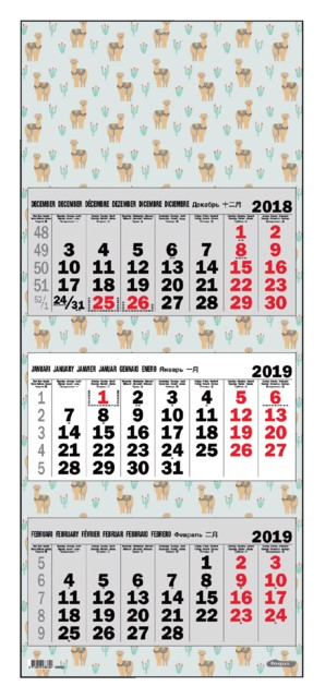 3-Maandskalender 2019 Foqus alpaca